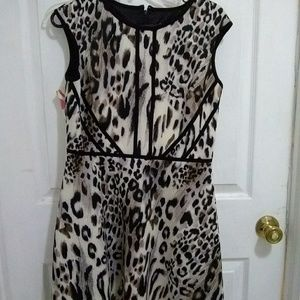 Flare dress . Only worn once.
